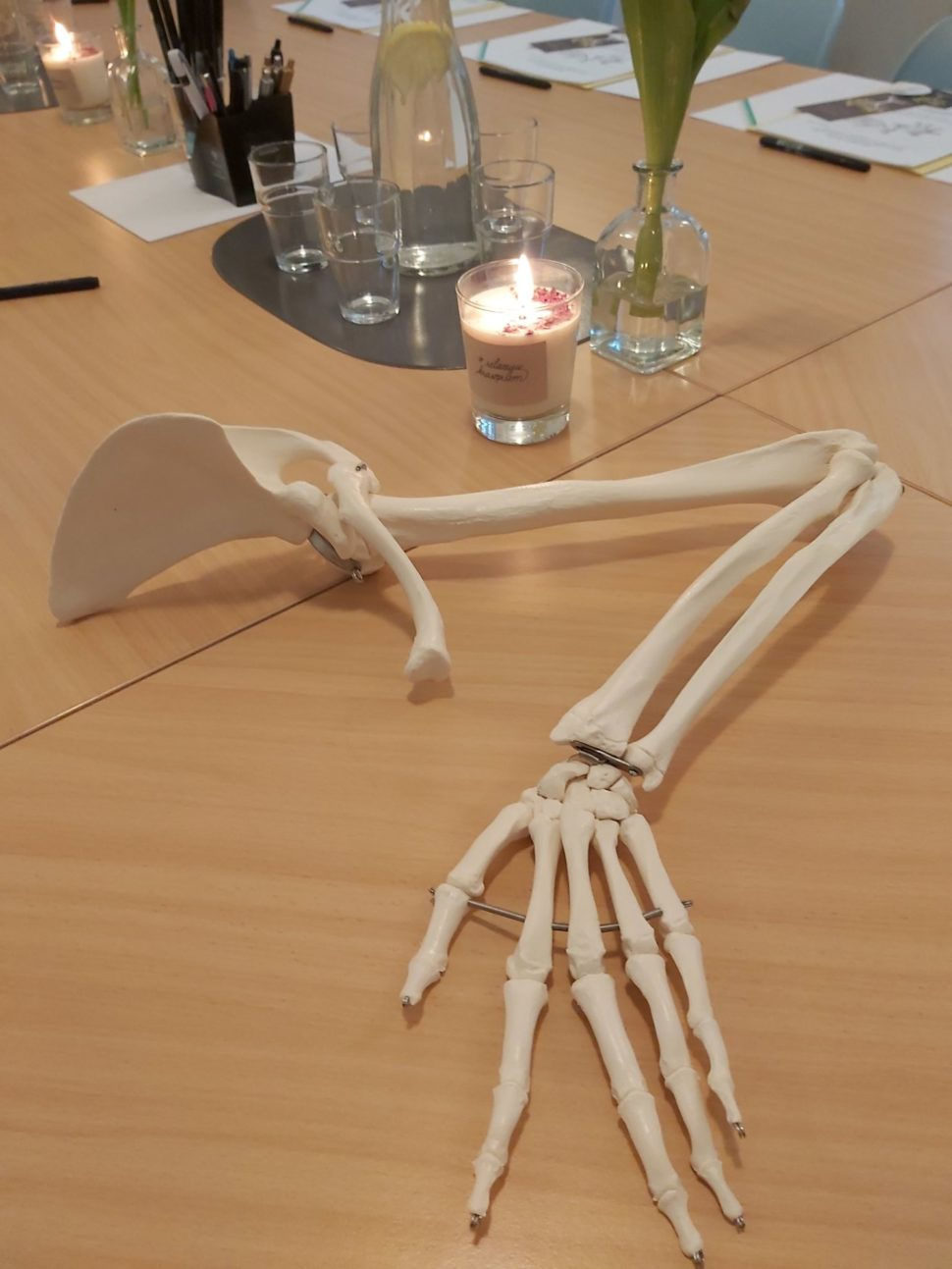 Kostra ruky je součástí workshopu Krasopis azdravé ruce